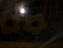 Halloween party_151