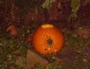 Halloween party_30