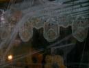 Halloween party_73