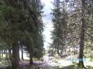 Kandersteg_831