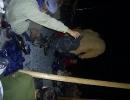 hajk2007_162